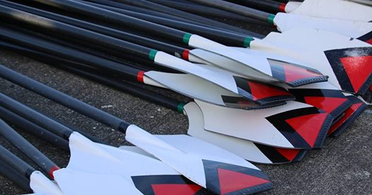 oars stacked on the ground